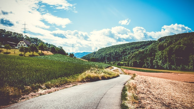 Green Field and Road in Landscape Photography