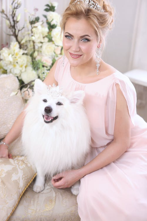 Woman in White Tank Top Holding White Long Coated Small Dog