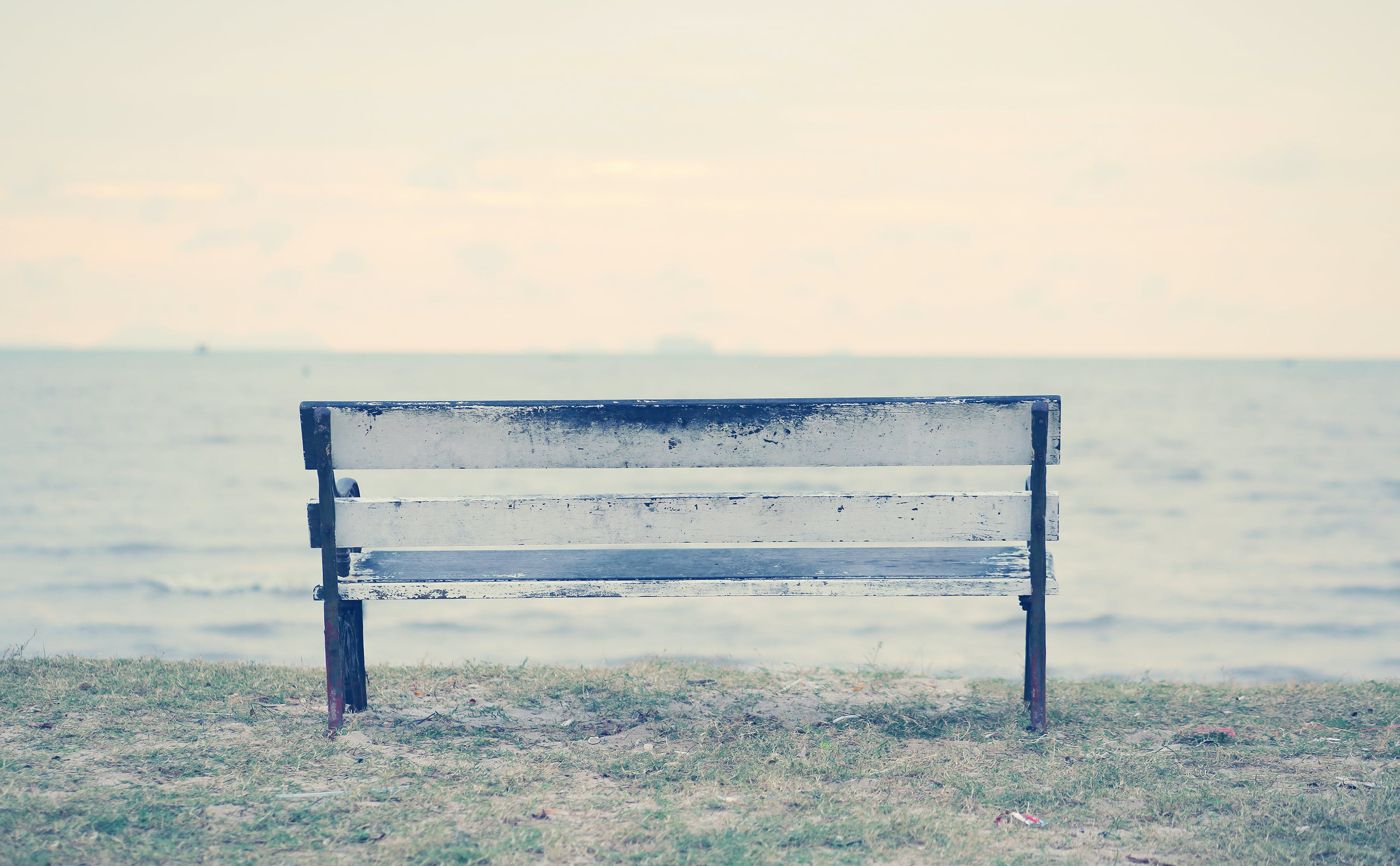 Free stock photo of bench, chair, feeling, grass