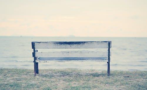 Základová fotografie zdarma na téma čekat, jedna, klasický, lavička