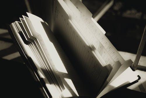 Základová fotografie zdarma na téma blok, čára, číslice
