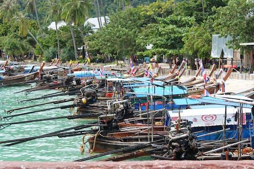 Immagine gratuita di barche, isola di phi phi, mehran babaee, tailandia