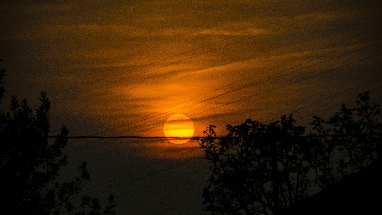 Free stock photo of autumn, nature, orange, sky