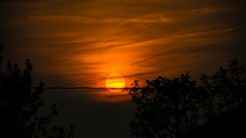 Free stock photo of nature, orange, sky, sun
