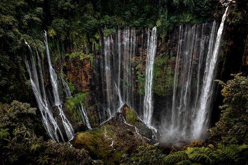 Free stock photo of cascade, cliff, creek