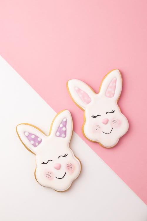 Free stock photo of art, bunny, card
