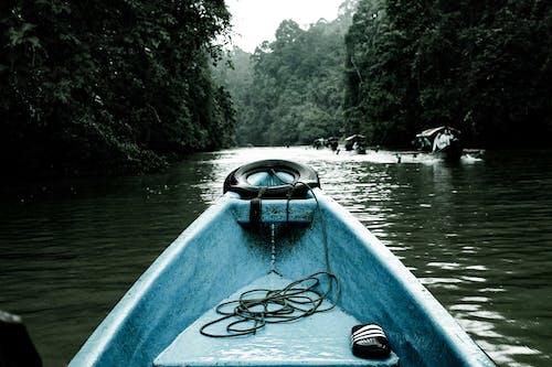 Blue and Black Kayak on Lake