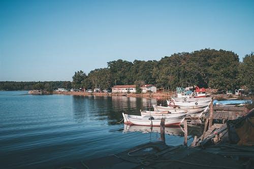 Boats Docked on the Shore