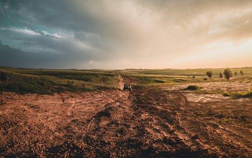 ファーム, フィールド, 土壌の無料の写真素材