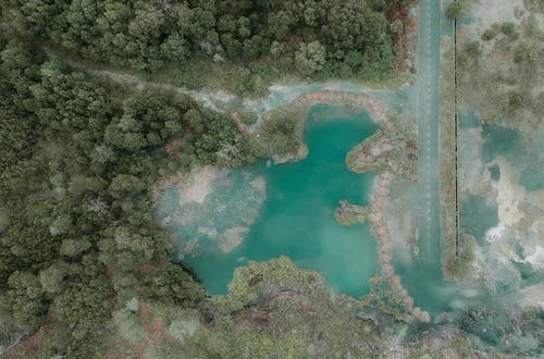 Immagine gratuita di acqua, alberi, boschi, da sopra