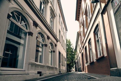 Empty Street Between Concrete Buildings
