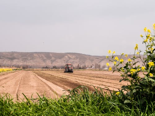 培育, 拖拉機, 栽培 的 免費圖庫相片