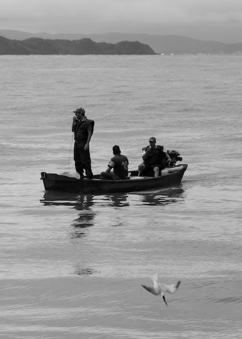 Kostnadsfri bild av aqua, b & w, båt