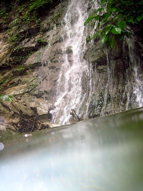 Fotos de stock gratuitas de agua, cascada, jungla, rocas