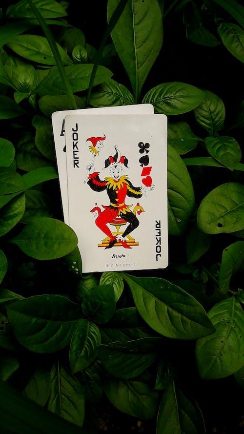 Jack of Diamonds Playing Card