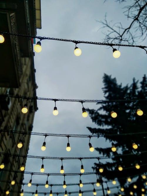 Free stock photo of bright light, bright lights, buildings