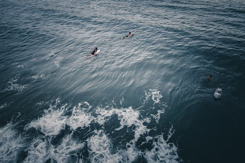Surfers swimming in blue sea while practicing water sport