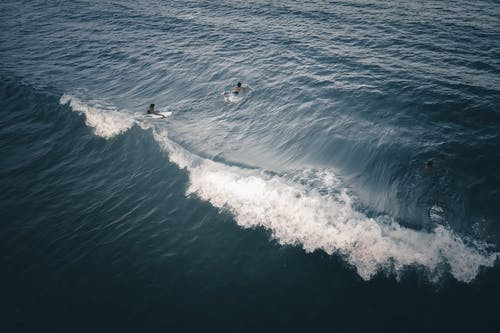 Surfers practicing extreme hobby on wavy sea