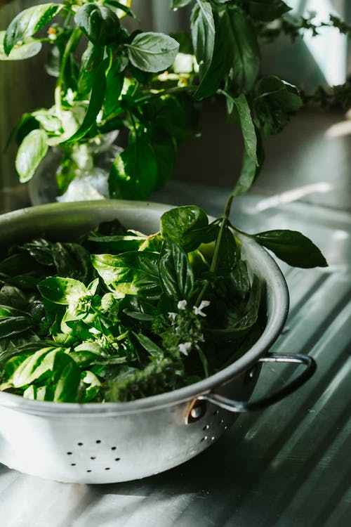 Green Leaves in Stainless Steel Cooking Pot