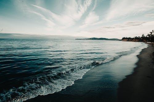 天性, 天空, 岸邊, 招手 的 免費圖庫相片