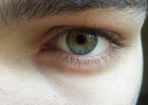 Free stock photo of eye