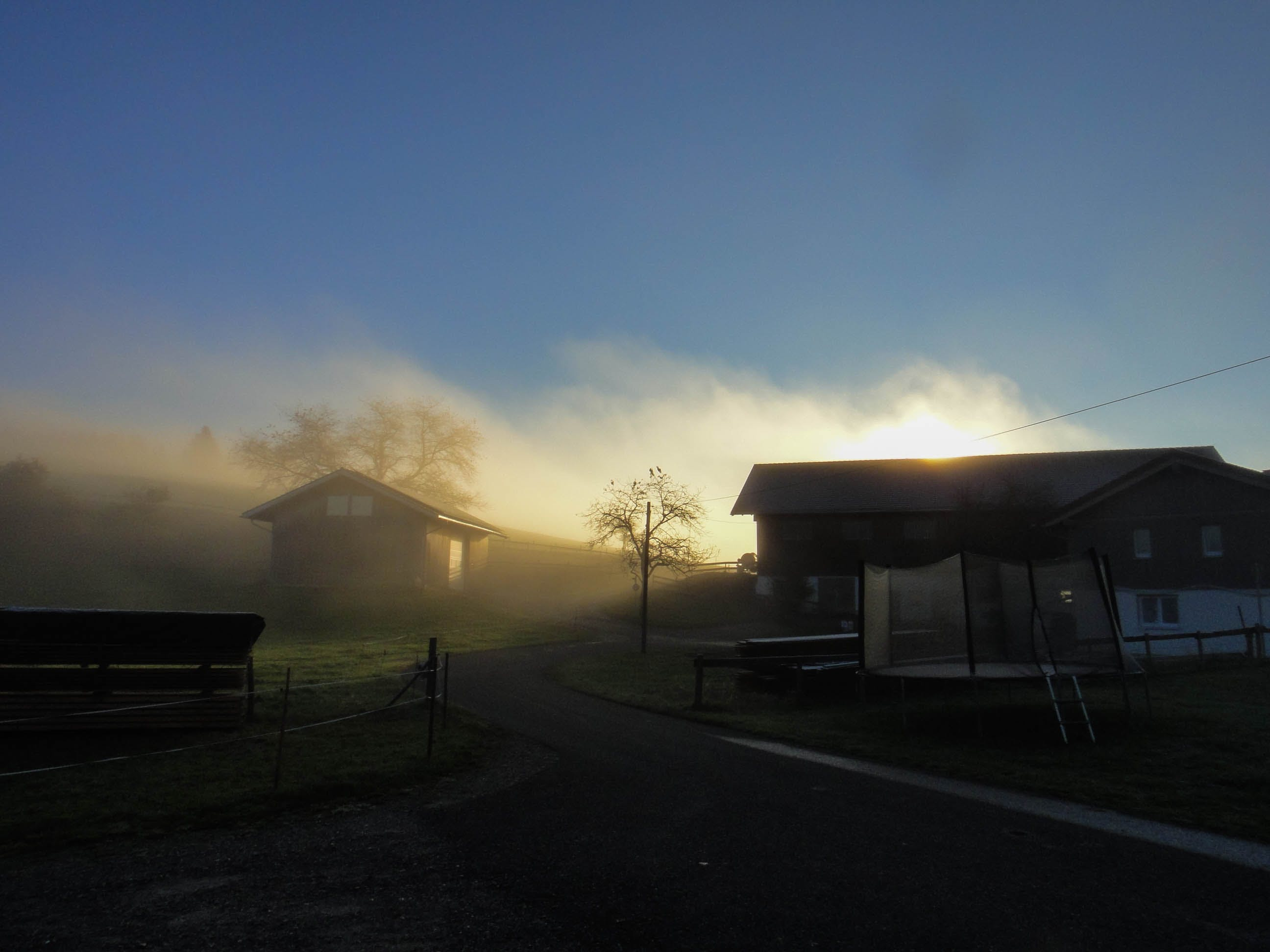 Free stock photo of early morning, fog, light and shadow, sun glare