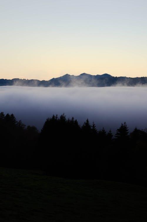 Immagine gratuita di alba, alberi, mare di nuvole, montagna
