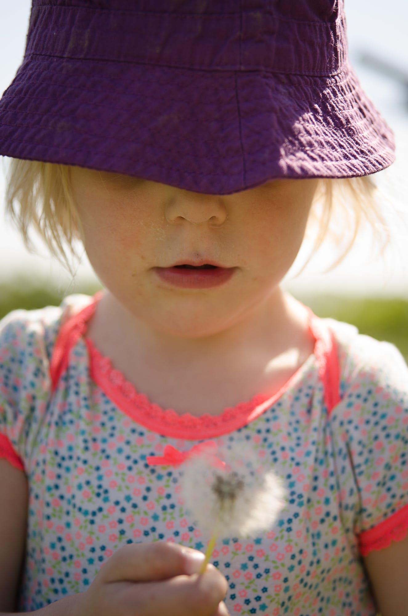 Free stock photo of child, dandelion seeds, outdoor, summer