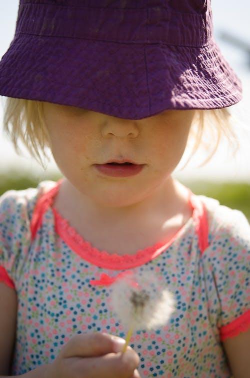 Gratis lagerfoto af barn, mælkebøttefrø, sommer