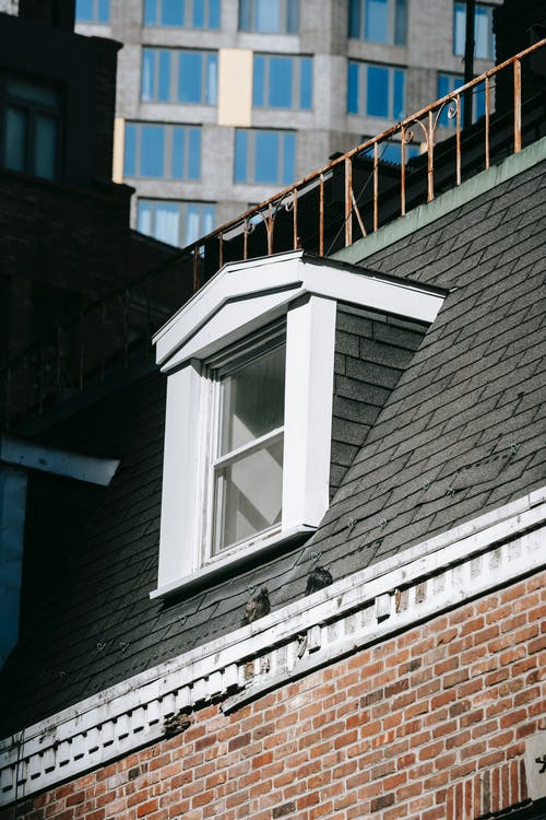 Immagine gratuita di alloggiamento, angolo basso, architettura