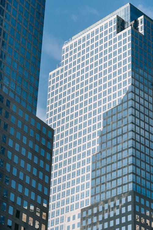 개발, 거문고, 건물의 무료 스톡 사진