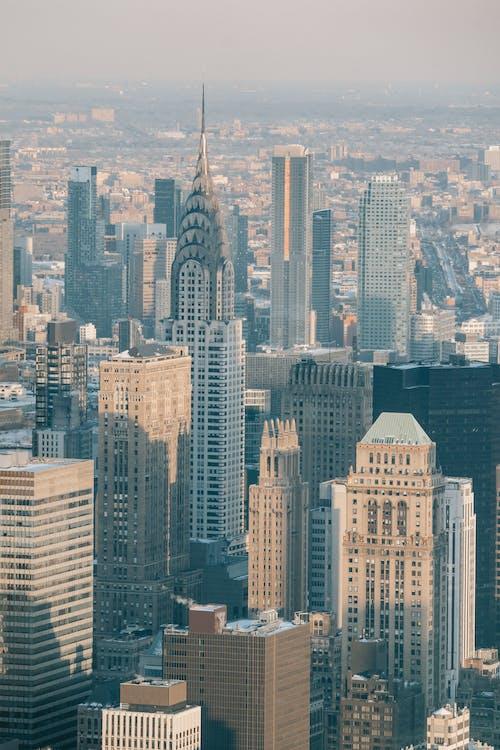 Immagine gratuita di alto, ambiente, america