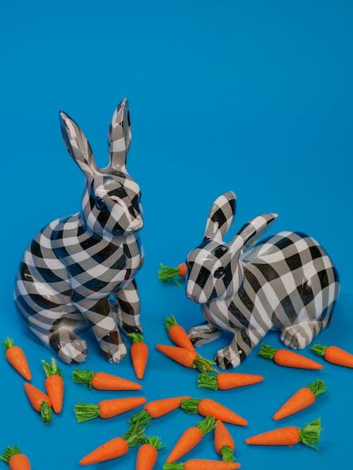 Ảnh lưu trữ miễn phí về cà rốt, Chúc mừng lễ Phục sinh, dễ thương