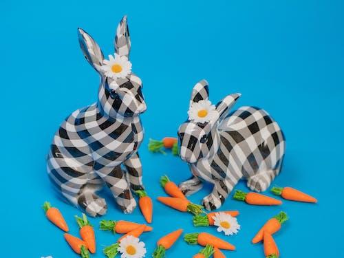 Ảnh lưu trữ miễn phí về cà rốt, Chúc mừng lễ Phục sinh, đôi tai