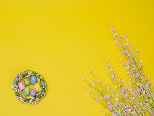 Gratis arkivbilde med fargerik, farget, feiring