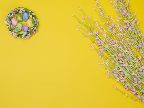 Gratis arkivbilde med blomster, blomstret, flat lå