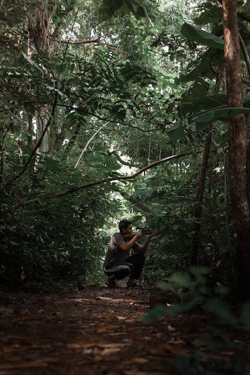 Бесплатное стоковое фото с вертикальный, винтовка, дремучий лес