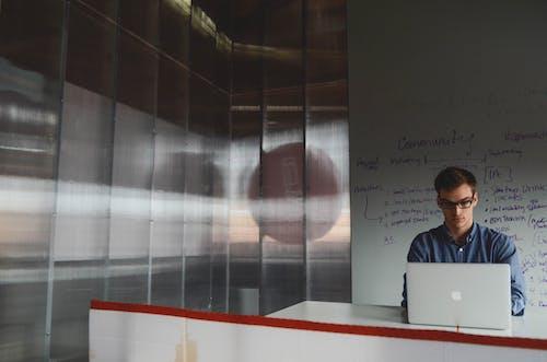 Kostenloses Stock Foto zu arbeiten, arbeitsplatz, büro, held