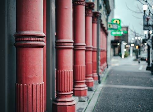 Free stock photo of architecture, art, city