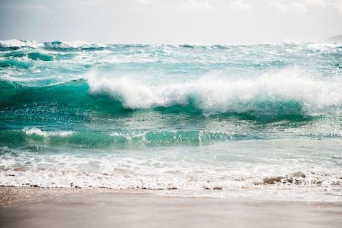 Foamy sea waves rolling on sandy beach