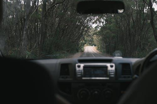 Gratis stockfoto met achteraanzicht, afzondering, asfalt
