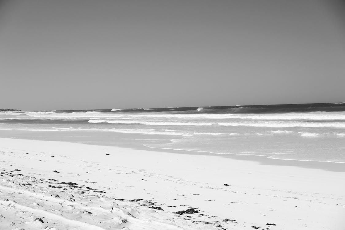 Peaceful sandy coast washed by foamy waves of ocean