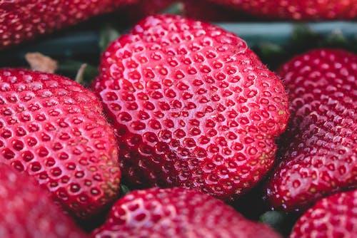 Základová fotografie zdarma na téma červená, chutný, detailní záběr, jahody