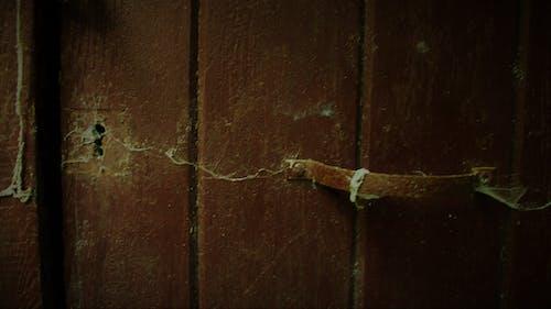 Immagine gratuita di maniglia, porta, ragnatela, serratura