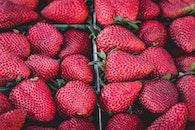 healthy, red, dessert