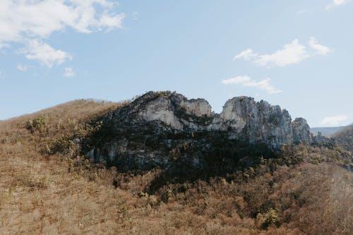 Бесплатное стоковое фото с вода, голубые небеса, гора