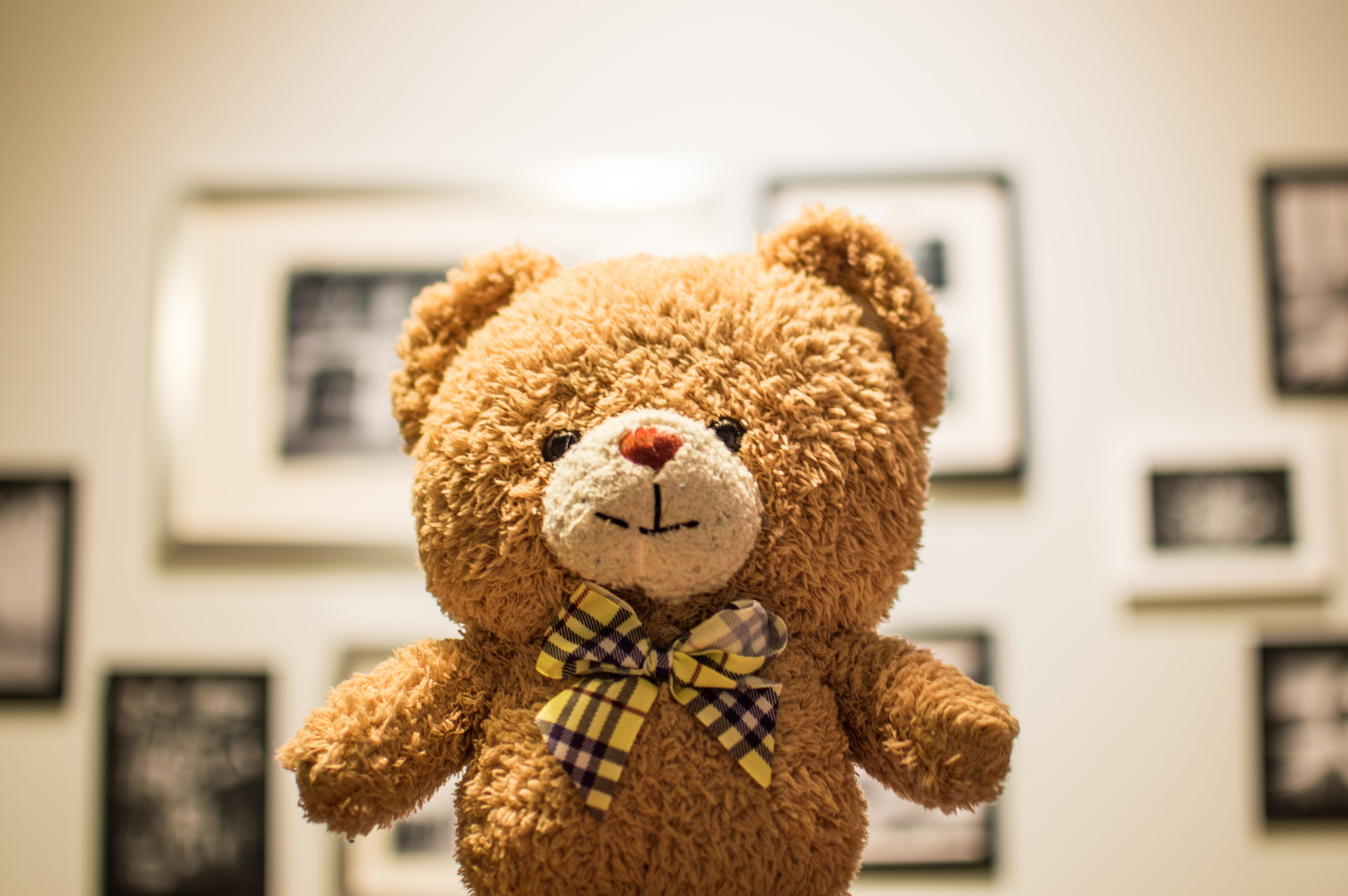Brown Bear Plush Toy