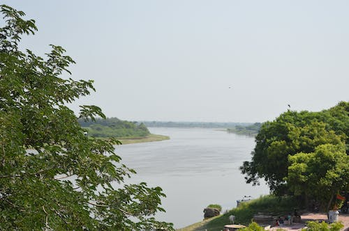 Free stock photo of dark river, green river, india, yamuna