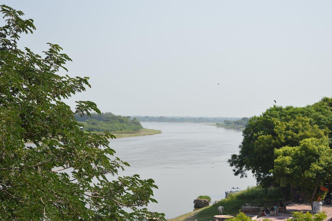 Free stock photo of dark river, green river, india