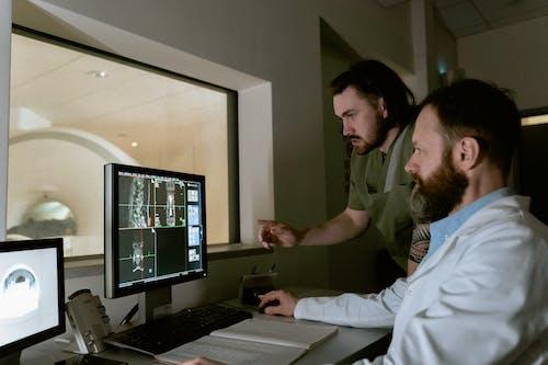 analiz, anatomi, baş içeren Ücretsiz stok fotoğraf